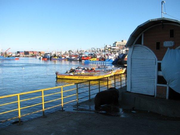 Hafen Talcahuano